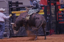 mcelfish_rodeo_05