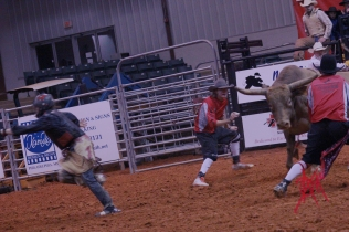 mcelfish_rodeo_13
