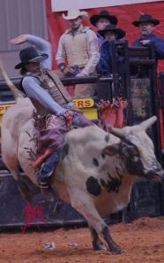 mcelfish_rodeo_16