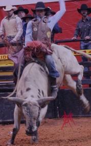 mcelfish_rodeo_18
