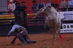 mcelfish_rodeo_20