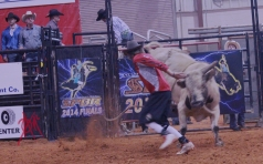 mcelfish_rodeo_21