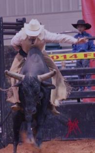 mcelfish_rodeo_22