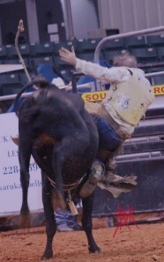 mcelfish_rodeo_24