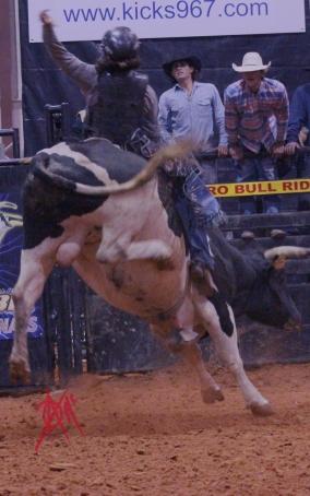 mcelfish_rodeo_31