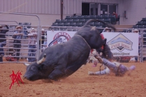 mcelfish_rodeo_40