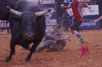 mcelfish_rodeo_41