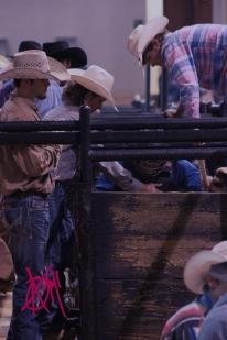 mcelfish_rodeo_49